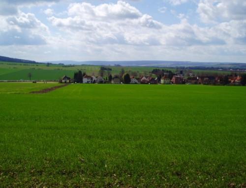 Koupili jste nebo chystáte se kupovat zemědělskou půdu nebo les? Zbystřete pozornost, dobrá zpráva!