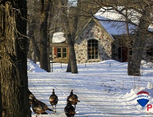 Jak a proč před zimou zazimovat chatu